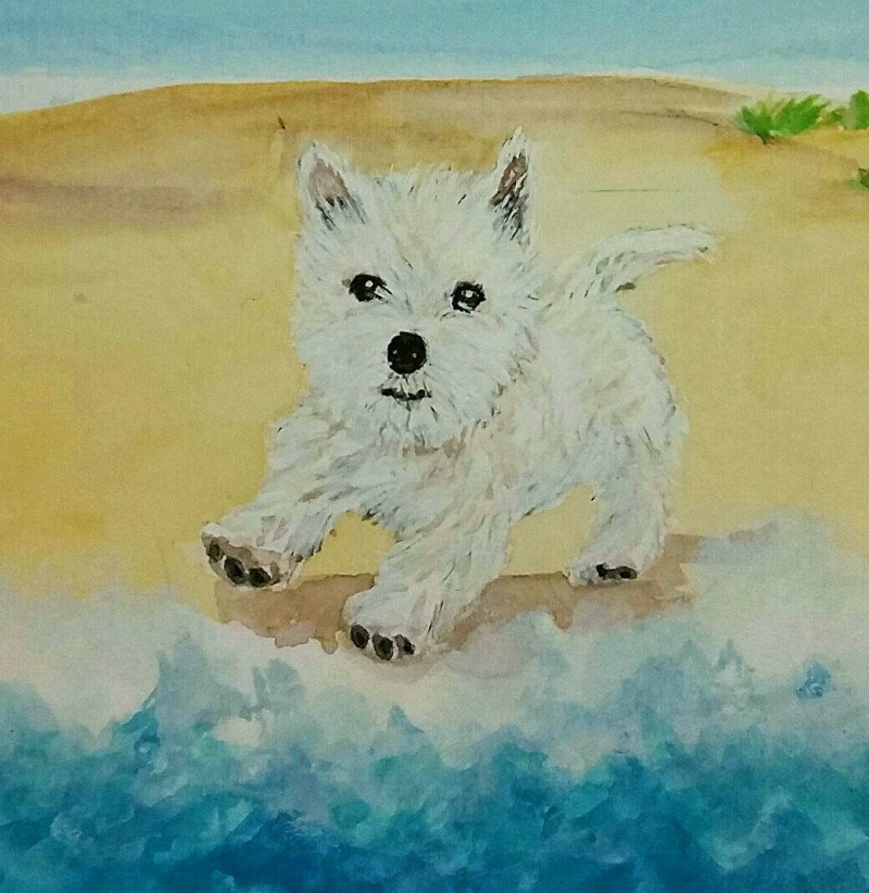 Westie Splash - Original £30